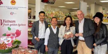 Hàng loạt đơn hàng từ Hà Lan, Pháp, Đức, Nauy đặt mua vải thiều Việt Nam
